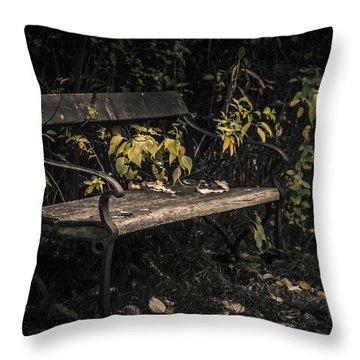 In A Forgotten Corner Throw Pillow