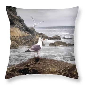 In A Mood Throw Pillow