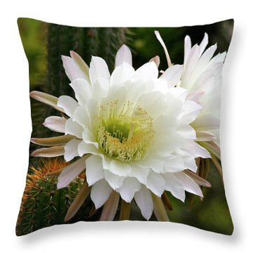 Throw Pillow featuring the photograph Cactus Blossoms by Melanie Alexandra Price