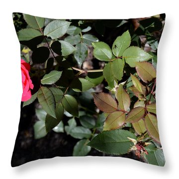 In Bloom Throw Pillow