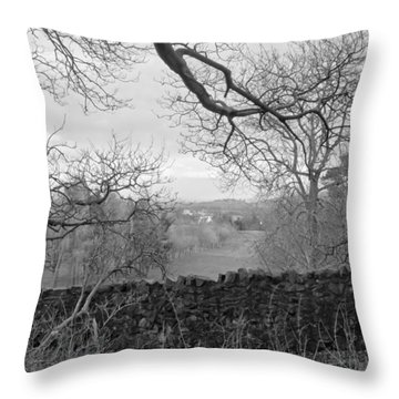 In December. Throw Pillow