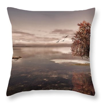 In Dreams Throw Pillow by Lourry Legarde