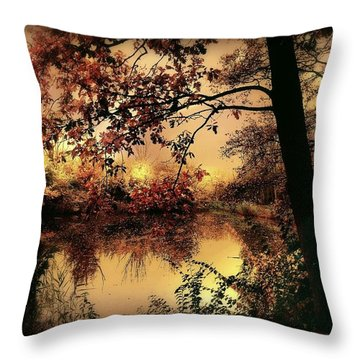 In Dreams Throw Pillow by Jacky Gerritsen