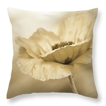 In Due Diligence  Throw Pillow