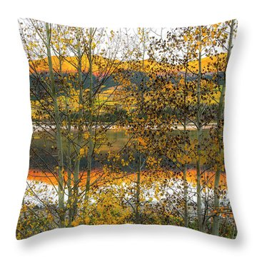 Throw Pillow featuring the photograph In Early Morning Light by Tim Reaves