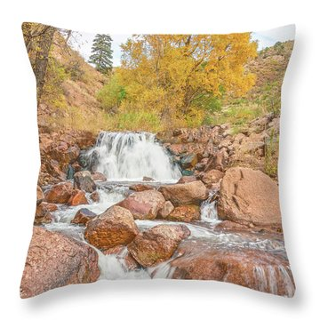 In Every Walk With Nature, One Receives Far More Than He Seeks, Wrote John Muir.  Throw Pillow