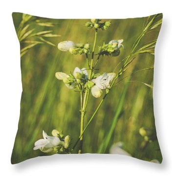 Throw Pillow featuring the photograph In Fields Of Gold by Christi Kraft