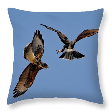 Throw Pillow featuring the photograph In Flight Challenge H43 by Mark Myhaver