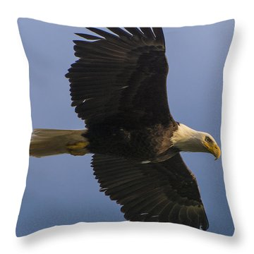 In Flight Throw Pillow by Gary Lengyel