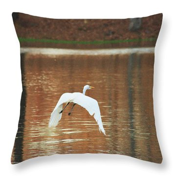 Throw Pillow featuring the photograph In Flight by Kim Henderson