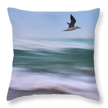 In Flight Throw Pillow by Laura Fasulo