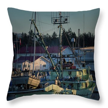 Throw Pillow featuring the photograph In For Ice by Randy Hall