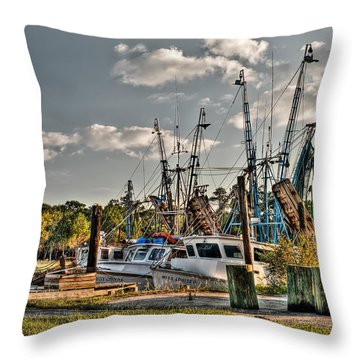 In For The Day Throw Pillow