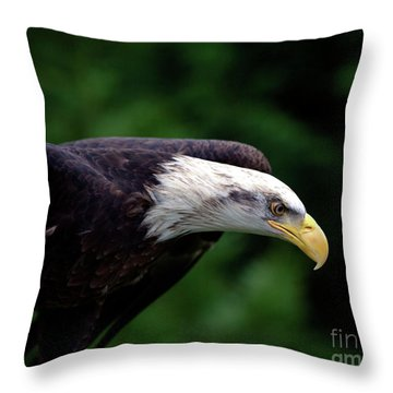In For The Kill Throw Pillow