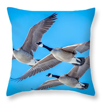 In Formation Throw Pillow