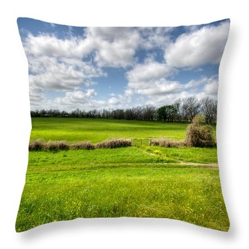 In Green Pastures Throw Pillow