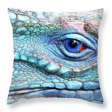 In His Eye Throw Pillow