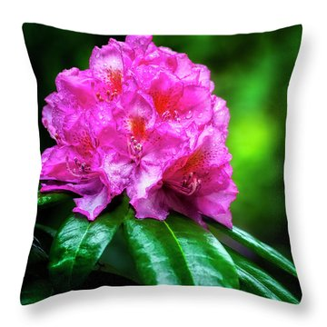 In It's Glory Throw Pillow