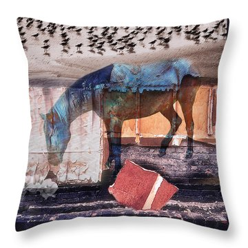 In Laredo They Dream Of The Sea Throw Pillow