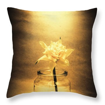 In Light Of Nostalgia Throw Pillow