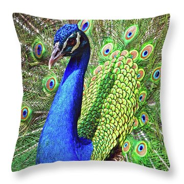 In Living Color Throw Pillow by Heidi Hermes