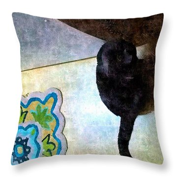 In Or Out  Throw Pillow