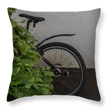 Throw Pillow featuring the photograph In Park by Odd Jeppesen