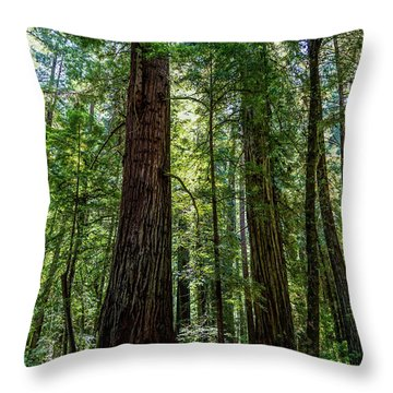 In Person Throw Pillow