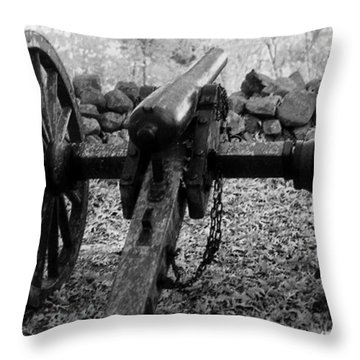 In Plain Sight Throw Pillow by Richard Rizzo
