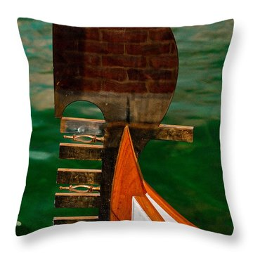In Reflection Throw Pillow by Christopher Holmes