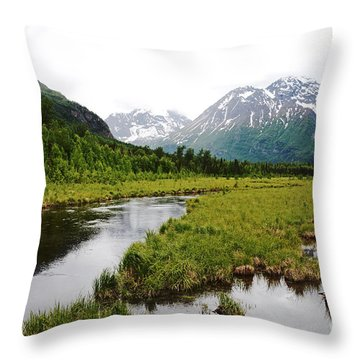 In Road To Denali Throw Pillow