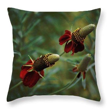 In Rousseaus Garden Throw Pillow