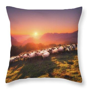 In Saibi With Companionsheep Throw Pillow