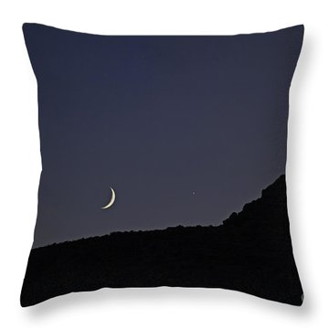 In Search Of Atlantis-4 Throw Pillow