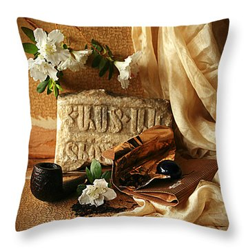 In Search Of Lost Time II Throw Pillow