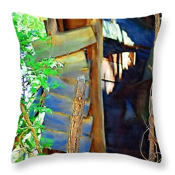 Throw Pillow featuring the photograph In Shambles by Donna Bentley