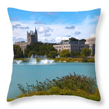 In The Afternoon Throw Pillow