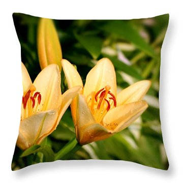 Throw Pillow featuring the photograph In The Beginning by Angie Tirado