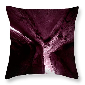 In The Belly Of A Two Headed Giant Throw Pillow