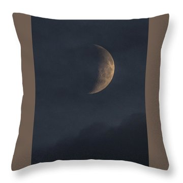 Throw Pillow featuring the photograph In The Blue Hours by Alex Lapidus