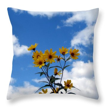 In The Clouds Throw Pillow by George Jones