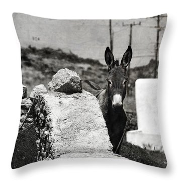 In The Countryside Of Mykonos Throw Pillow