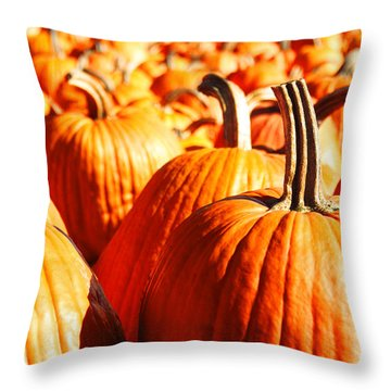 Throw Pillow featuring the photograph In The Days Still Left  by Dana DiPasquale