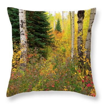 Throw Pillow featuring the photograph In The Depths Of Autumn Woods by Tim Reaves