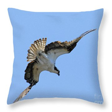 Throw Pillow featuring the photograph In The Dive by Alana Ranney