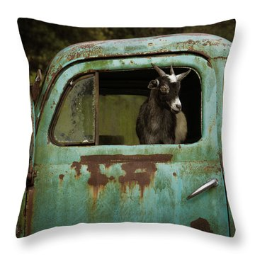 In The Drivers Seat Throw Pillow