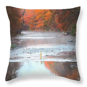 In The Early Morning Mist Throw Pillow