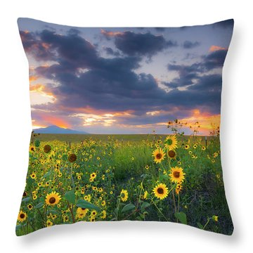 Throw Pillow featuring the photograph In The Evening Light by Tim Reaves