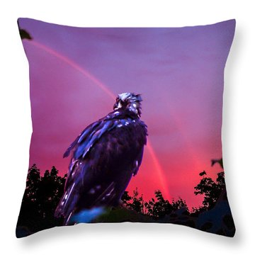 In The Eye Of A Hawk Throw Pillow