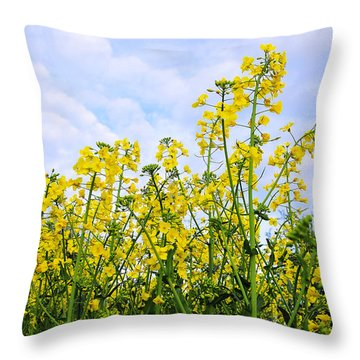 In The Field Throw Pillow by Svetlana Sewell